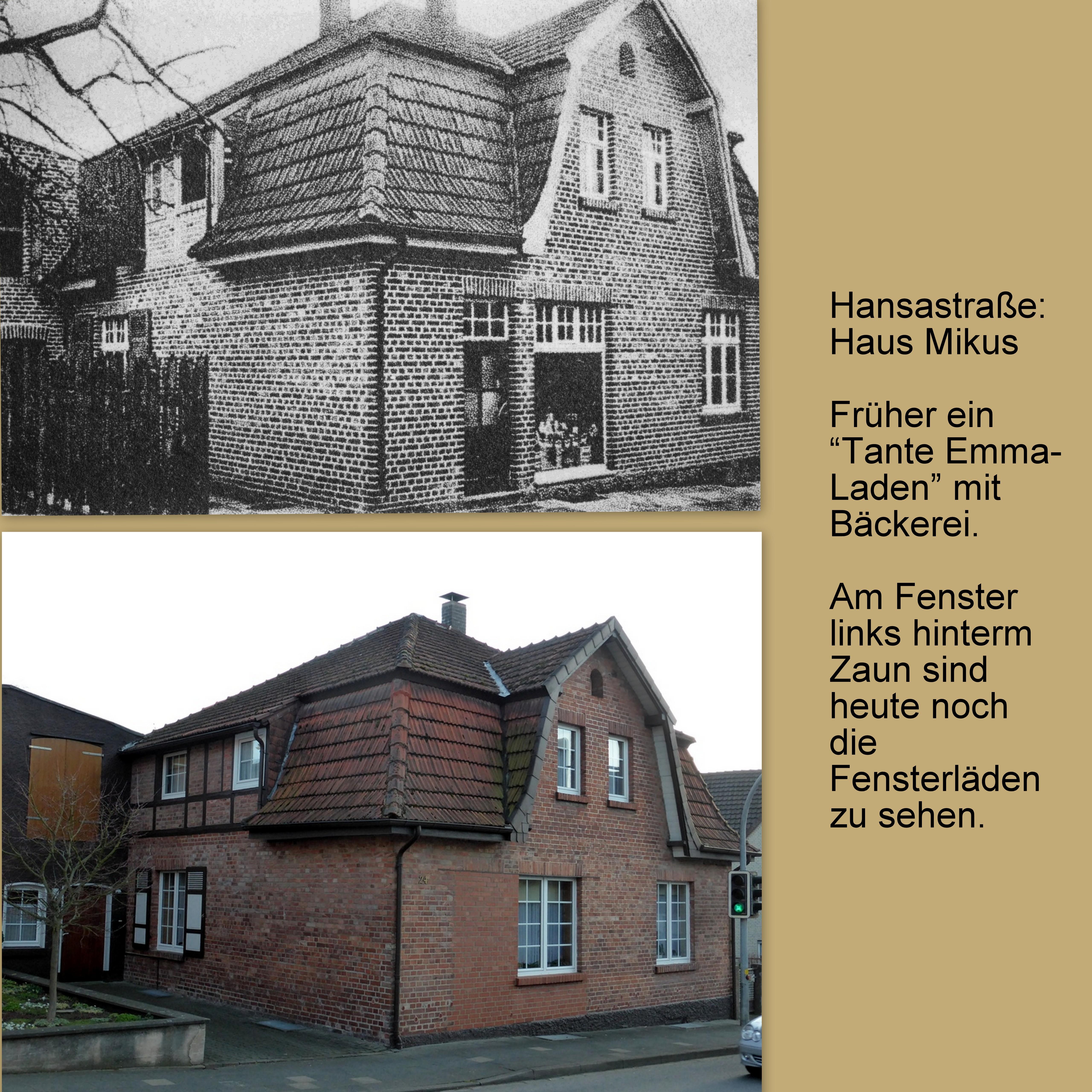Haus-Mikus